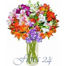 Где купить свежие цветы в г.дзержинском луковичные цветы купить